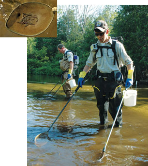 Two U.S. Fish and Wildlife Service control agents conducting larval assessment with electrofishing backpacks.