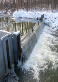 Trail Creek Barrier and Fish Ladder Trap