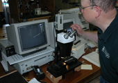 Using High Powered Microscope to Examine Coded Wire Tags