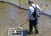 Sea Lamprey Assessment using Mobile Antenna