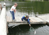 Boys Reaching for Fish with Net
