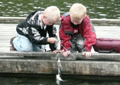 Boys Fishing, Looking at Their Catch