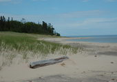 Caribou Island Grassland and Beach